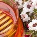 Les caractéristiques et les bienfaits du miel de Manuka
